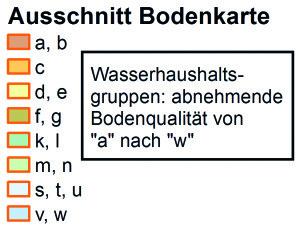 Ausschnitt der Waldbodenkarte im Raum Irchel (Wilemerirchel). Die Bodeneinheiten haben einen dreiteiligen Code bestehend aus Wasserhaushalt, Bodentyp und Geländetyp. Bodentypen: B: Braunerde, E: Saure Braunerde, T: Parabraunerde, V: Braunerde-Gley und W: Buntgley | © Fachstelle Bodenschutz; Datenerhebung: BABU GmbH Zürich