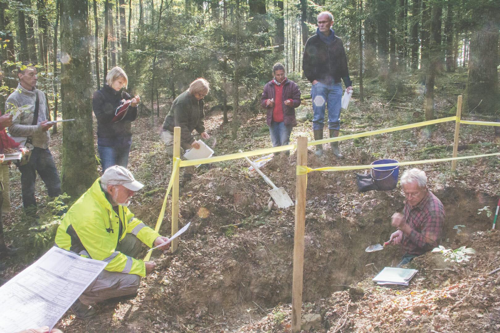 Bodenkartierung im Wald.