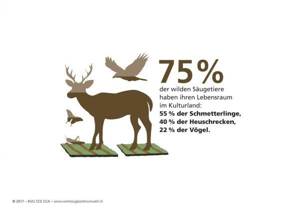 75 Prozent der Säugetiere haben ihr Lebensraum im Kulturland.
