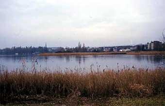 Ausblick ins Naturschutzgebiet Choller.