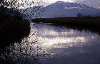 Naturschutzgebiet Choller.