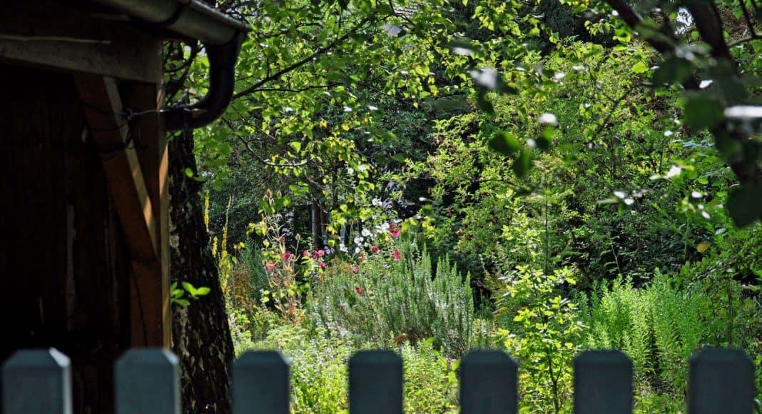 Der naturnahe Garten von Christine Dobler Gross.
