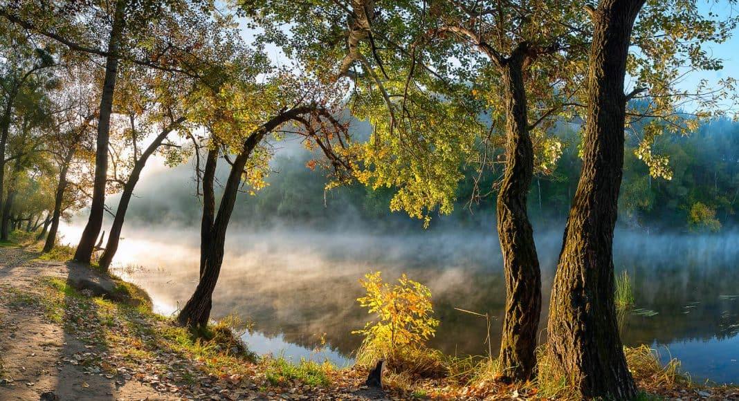 Wie gross ist der ökologische Fussabdruck?