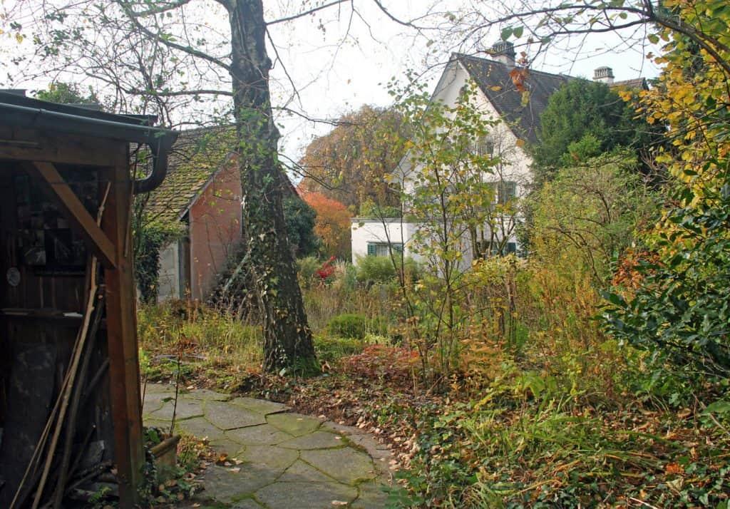 Ein naturnaher Garten sieht im Herbst immernoch wild aus.