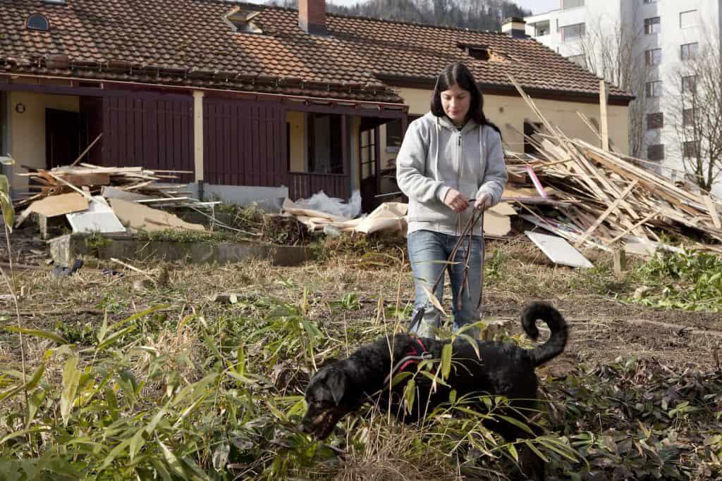 Mitarbeiterin des Igelzentrum Zürich hat sucht mit Ihrem Spürhund nach Igeln.