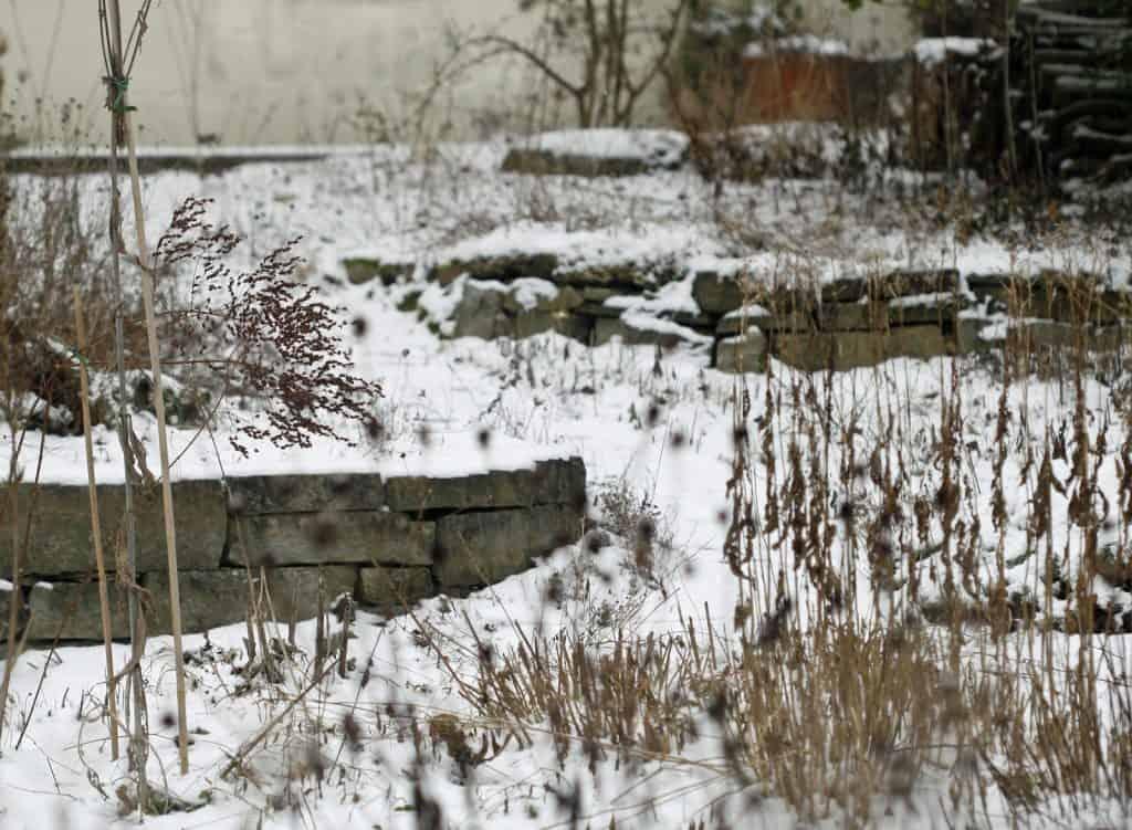 Tiere ruhen im Wintergarten.