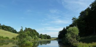 Weiher im Eigental, wo der Verkehr durch das Schutzgebiet der Amphibien für Diskussionen sorgt.