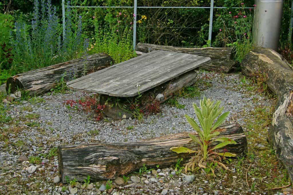 Totholz kann auch als Dekoration oder als Sitzgelegenheit genutzt werden.