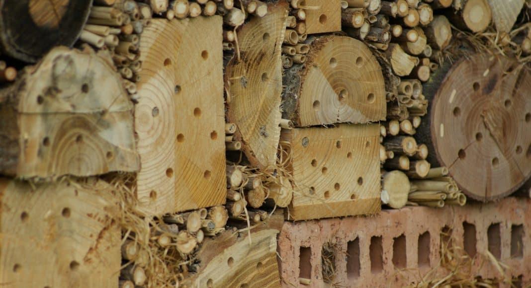 Nisthilfen für Wildbienen können auch nur Löcher im Holz sein.