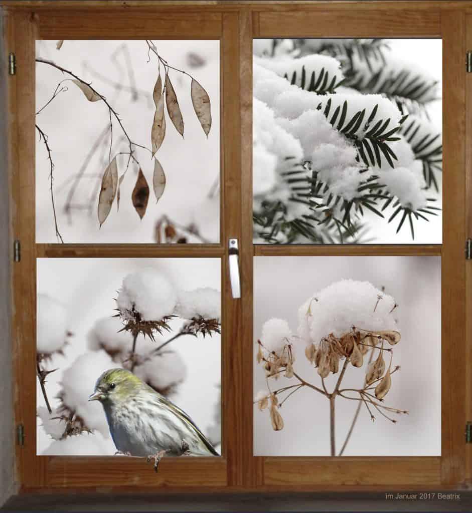 Verschneiter Garten zeigt Bäume mit Schnee und Vogel.