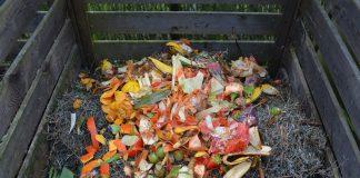 Nicht aller Plastik der als Bio angeschrieben ist, ist automatisch biologisch abbaubar.