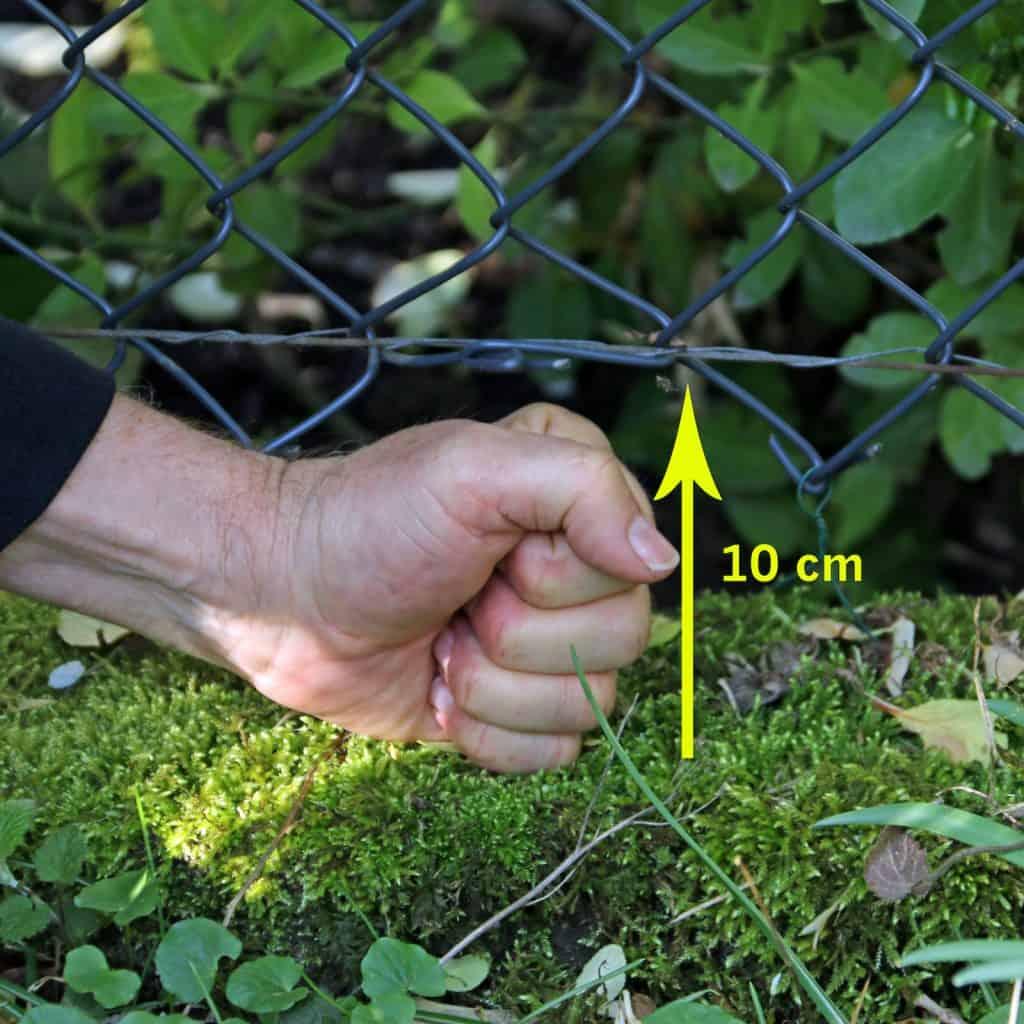 Damit der Igel unter einem Zaun hindurch kann, muss eine Faust Abstand zum Boden bestehen.