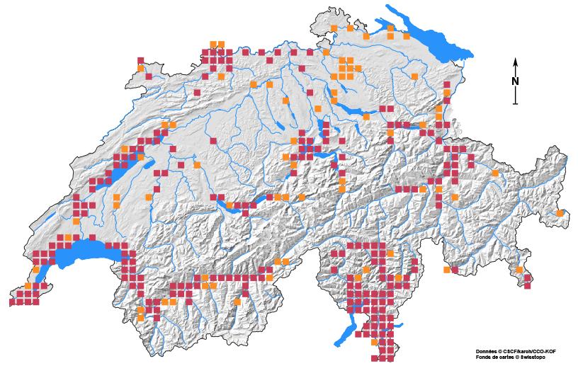 Die Verbreitung des Hirschkäfers in der Schweiz.