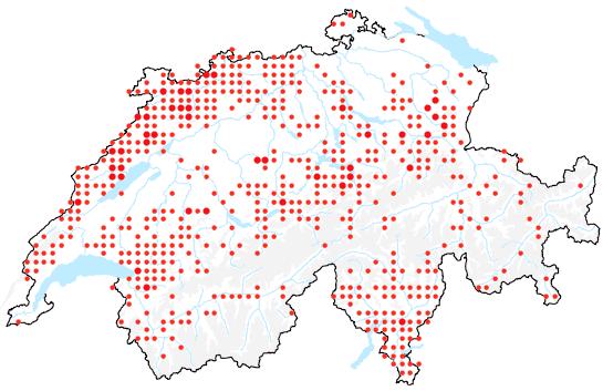 Verbreitung vom Fuchs-Greiskraut.