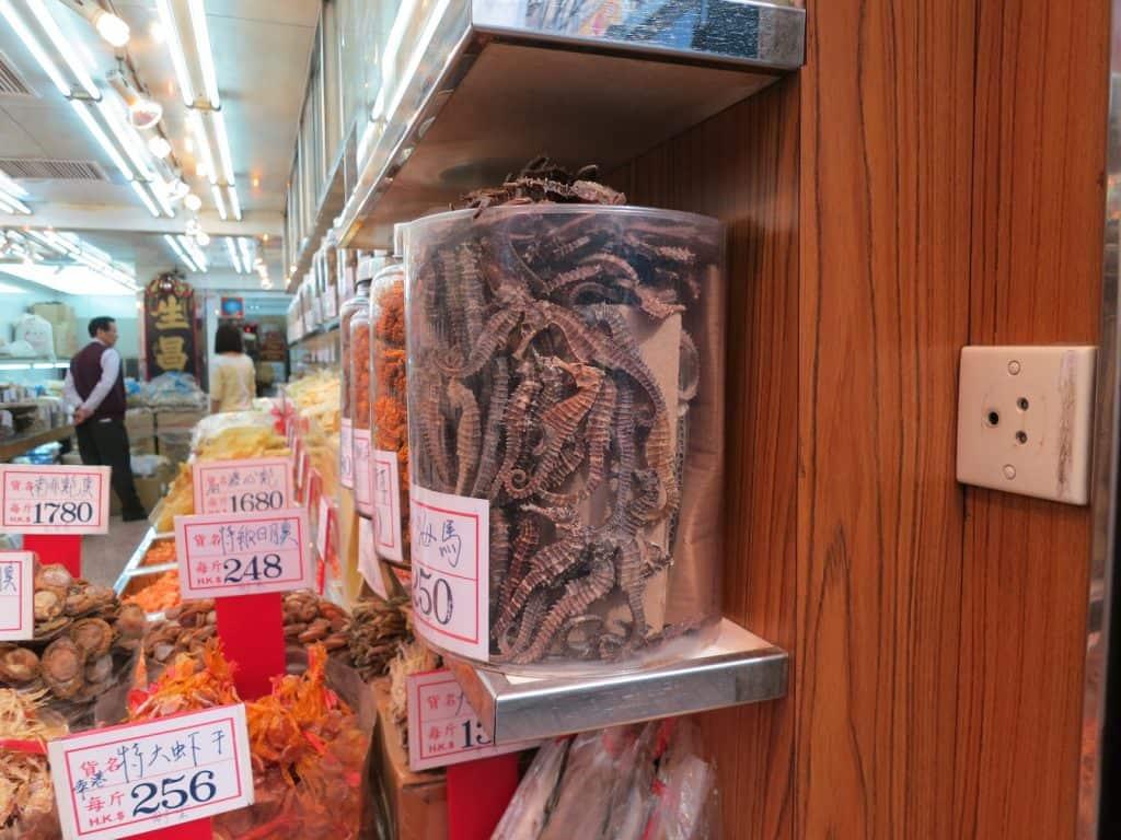 Seepferdchen werden in manchen Teilen der Welt auch gegessen.