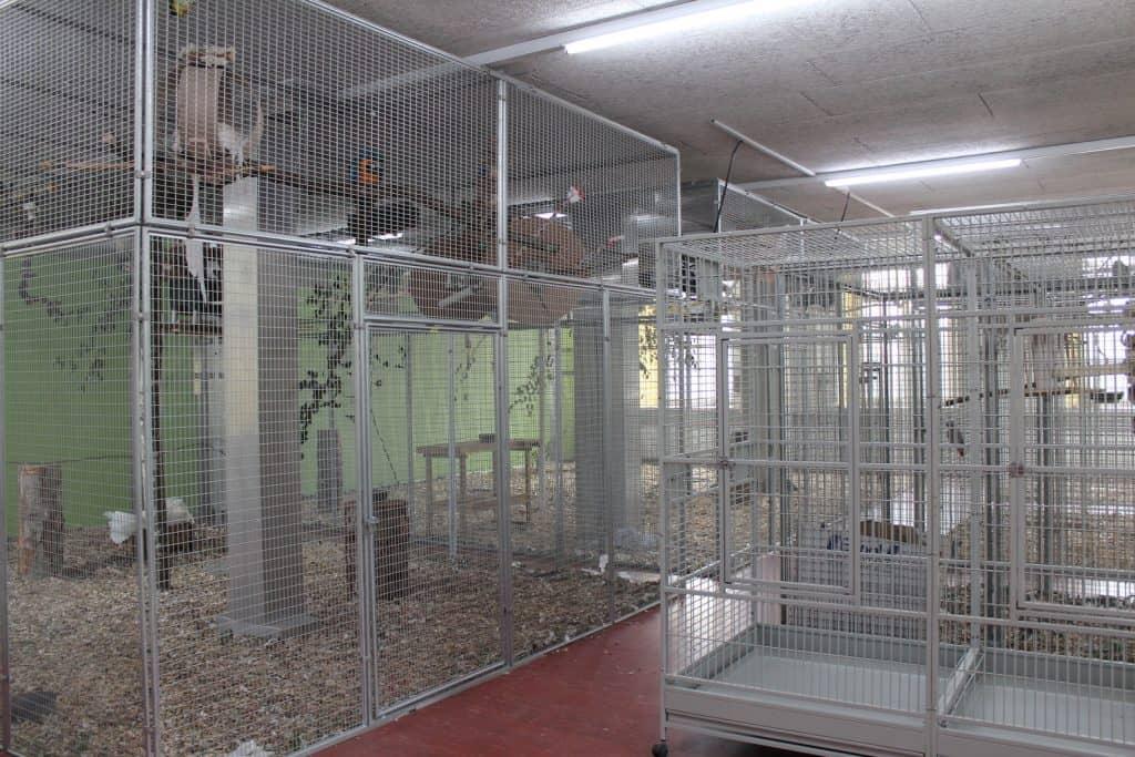 Innenraum der Papageien Voliere.