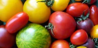 Konsumenten können die Biodiversität beeinflussen.
