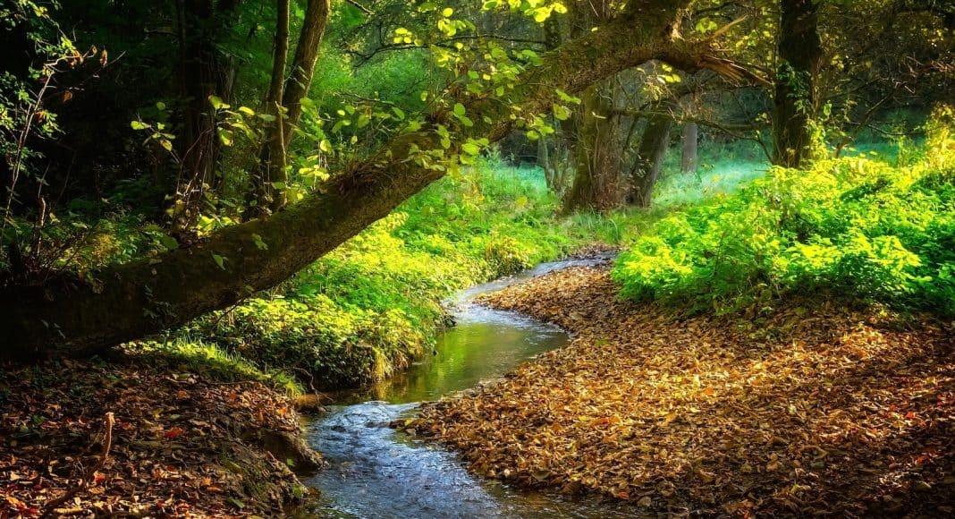 Es kann gut sein, dass auch dieser Fluss von Pestiziden verschmutzt ist.
