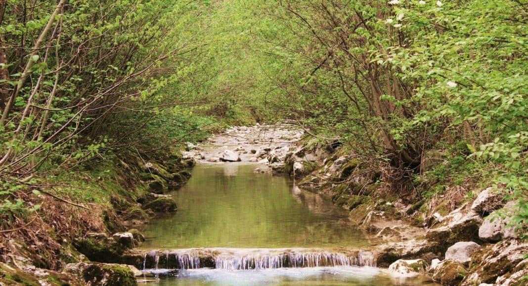 Gewässerschutz ist wichtig, damit nicht zu viel Pestizid in die Fliessgewässer gelangen.