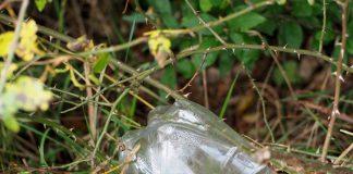 PET bleibt lange erhalten, hier eine PET-Flasche im Gebüsch.