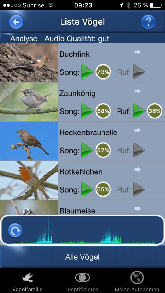 Vogelstimmen ID: Buchfink