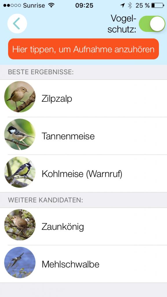 Zwitschomat: Buchfink