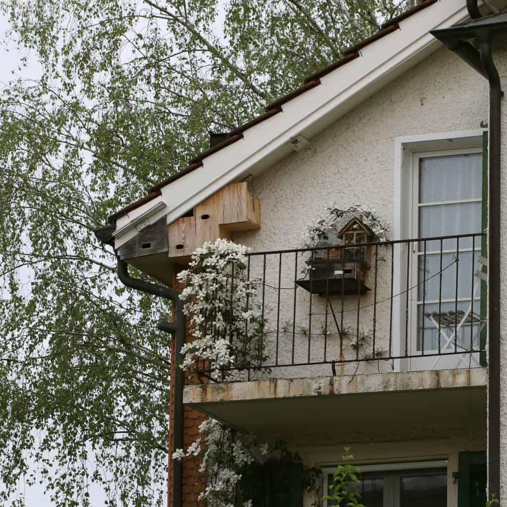 Haus mit vogelhaus und Nisthilfen für Wildbienen.