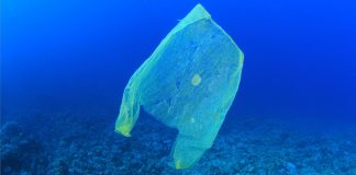 Plastiksack schwimmt im Meer.