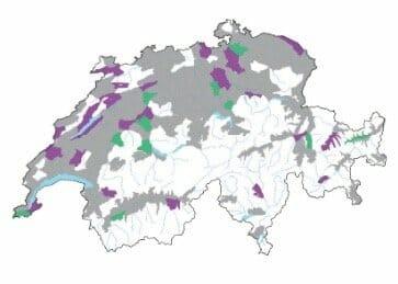 Verbreitungskarte Der Sumpf-Knöterich Polygonum amphibium L.