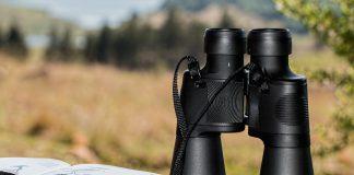 Bei Beobachtungen sollte man den Vögeln gegenüber Distanz wahren.