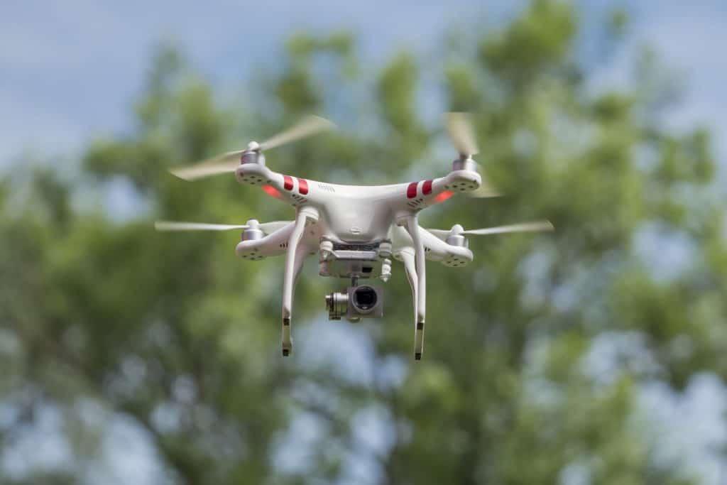 Drohnen können bei Wildtieren ein Stressauslöser sein.