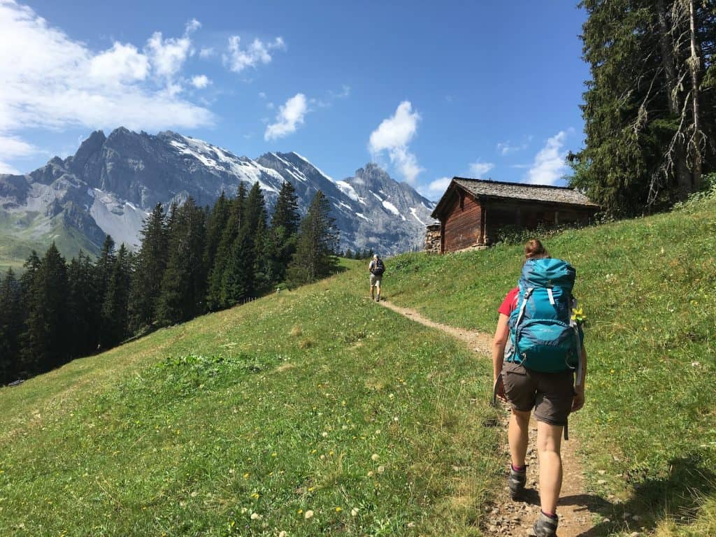Weg zur Rotockhütte hinauf.
