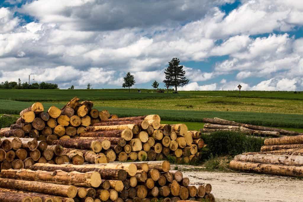 Ein Holzstapel in der Landwirtschaft.