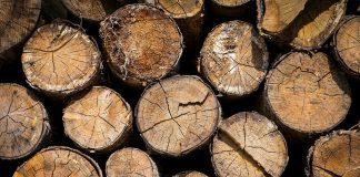 Viel Holz wird importiert.