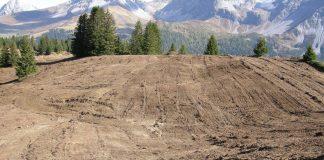 Weidepflegemassnahmen zerstören Kleinstrukturen im Gelände.