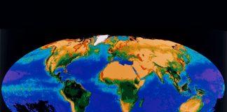 Erde aus dem All zeigt die weltweit verteilte Biomassen-Verteilung an.
