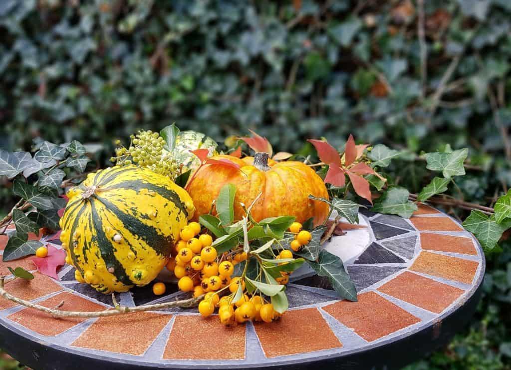 Kürbisse im Herbst machen gute Dekorationen.