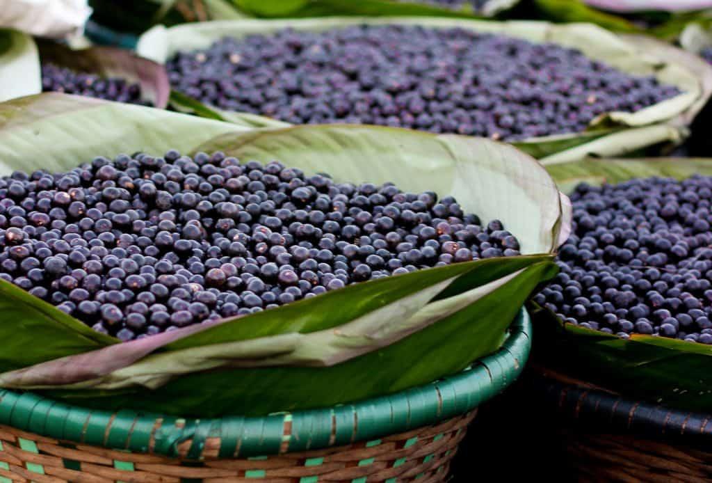 Acai Beeren gilt als sogenanntes Superfood.