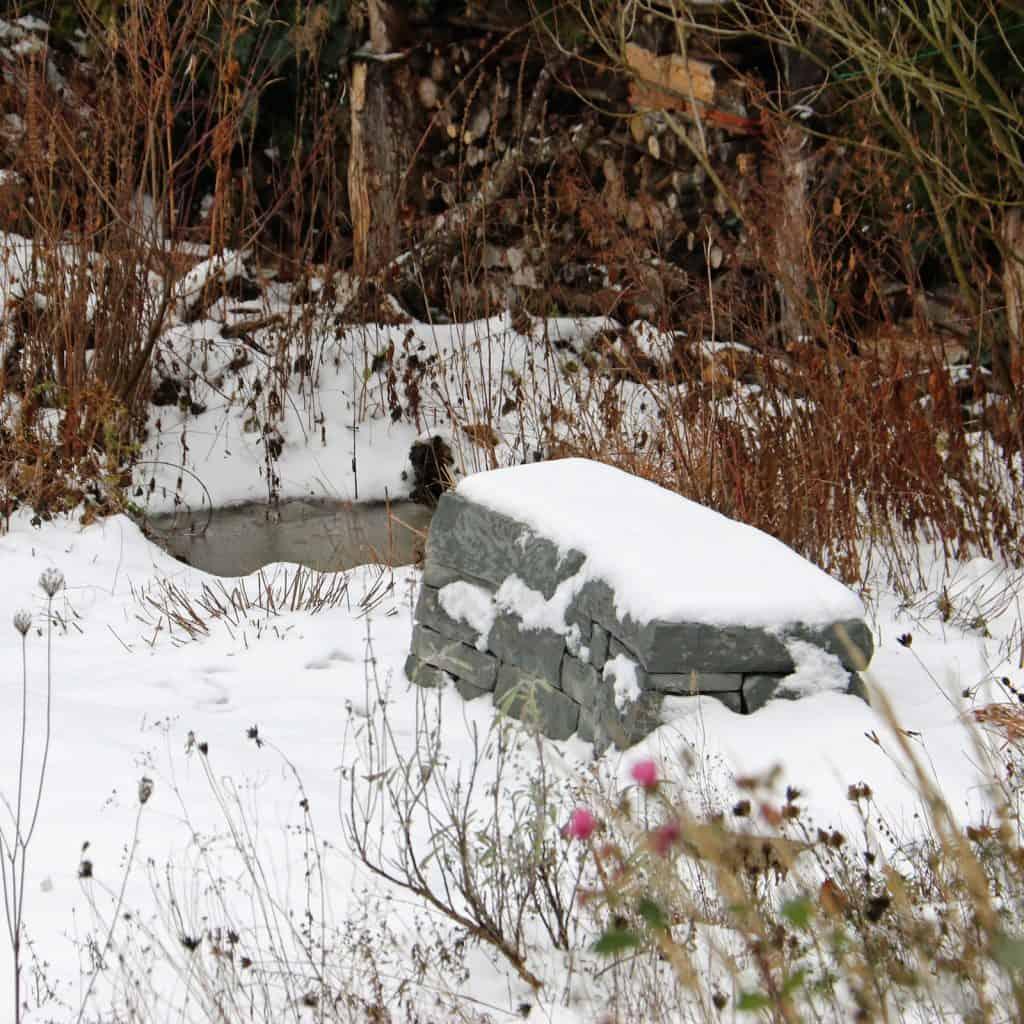 Ein verschneiter Garten.