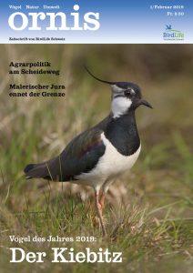 Natur Zeitschrift: Ornis Titelbild.