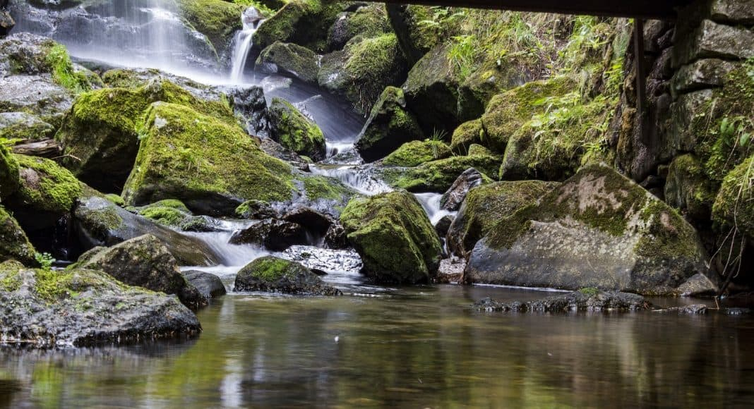Ein Bach fällt über vermooste Steine einen kleinen Wasserfall hinunter.