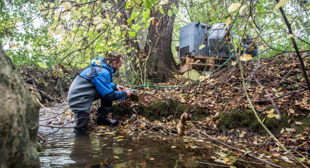 Ein Wissenschaftler testet das Fliessgewässer auf Pestizide der Landwirtschaft.