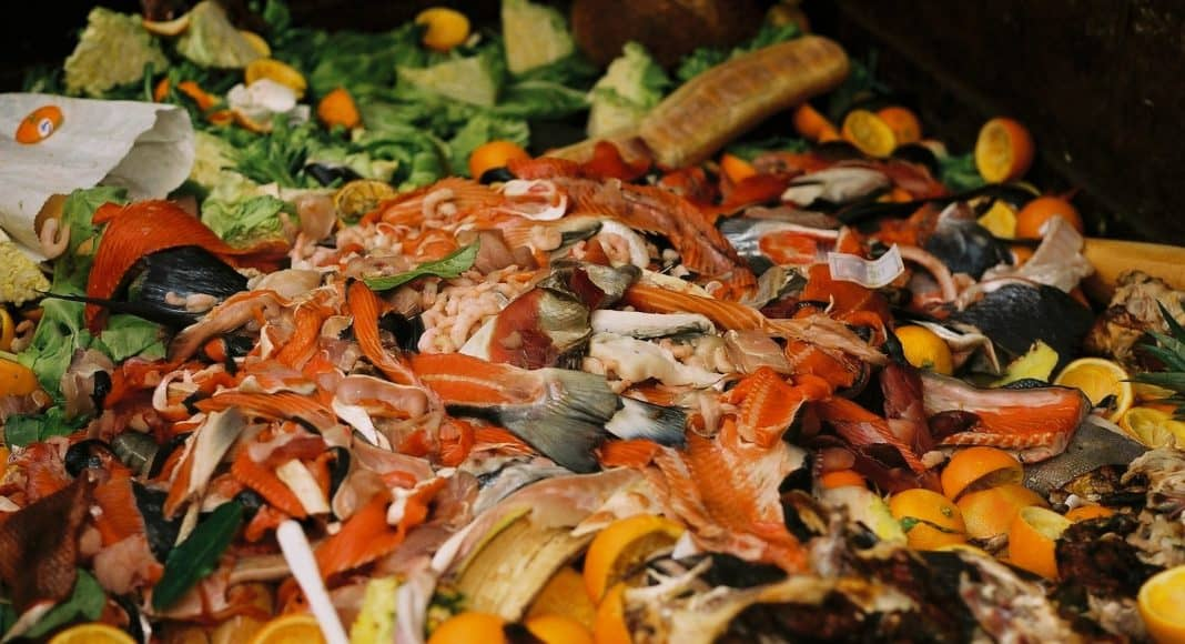 In der Schweiz gibt es im Haushalt und in der Landwirtschaft viel Food Waste.