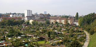 Familiengärten in Städten sind soziale und natürliche Hotspots.