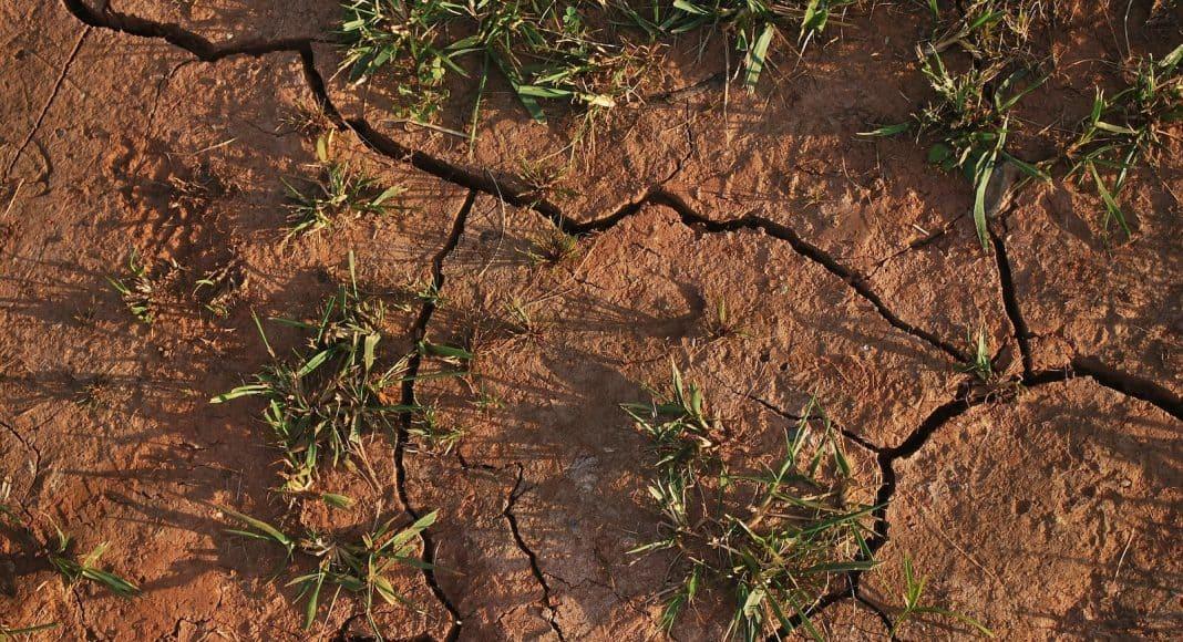 Urbanisierung führt zunehmend dazu, dass die ländlichen Gegenden Trockenheiten und Dürren ausgesetzt sind.