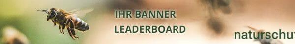 banner leaderboard
