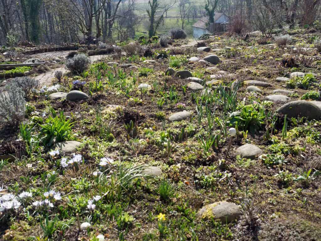 Kein Garten zu klein - vielfältig zu sein! Hotspot Kleingarten 2