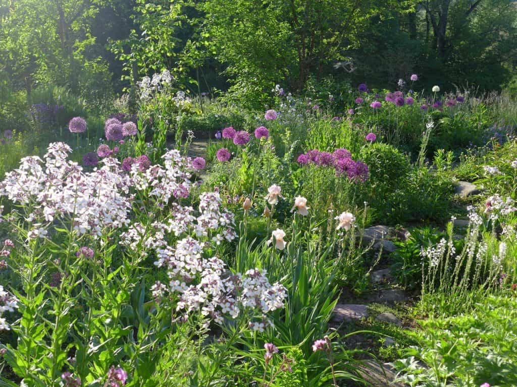 Kein Garten zu klein - vielfältig zu sein! Hotspot Kleingarten 4