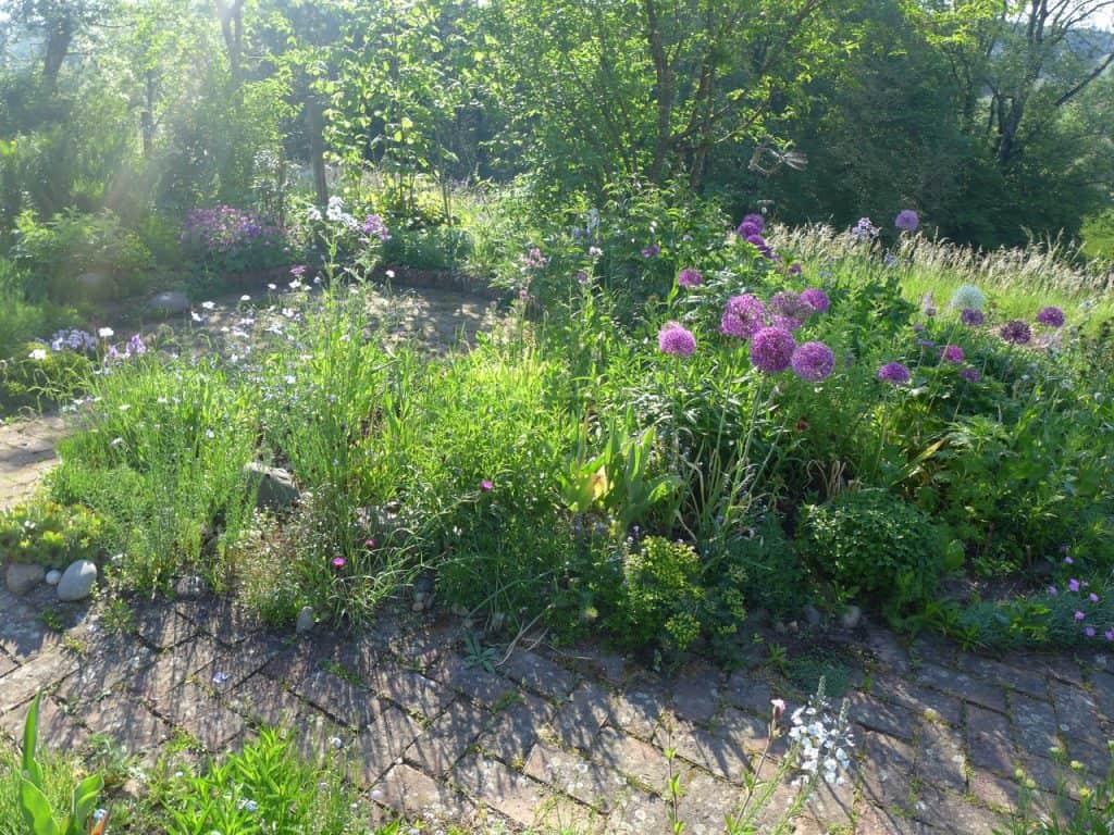 Kein Garten zu klein - vielfältig zu sein! Hotspot Kleingarten 6