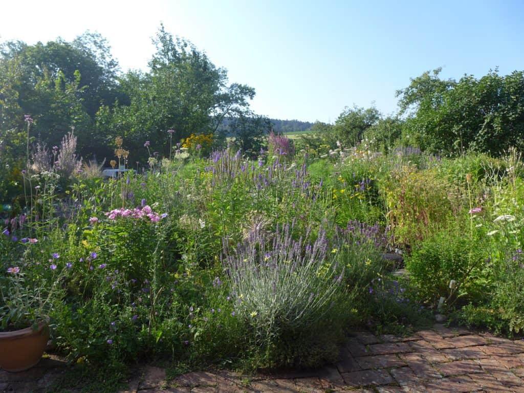 Kein Garten zu klein - vielfältig zu sein! Hotspot Kleingarten 10